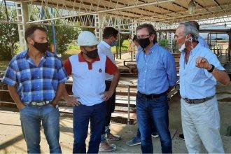 Proyecto de mejora tecnológica aplicada a pollos y huevos, elogiado por el ministro Bahillo