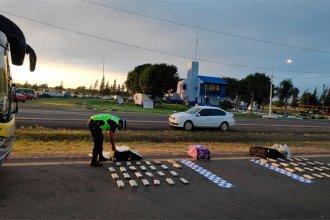 Viajaban a Buenos Aires con varios kilos de marihuana en valijas, pero fueron interceptados en Entre Ríos
