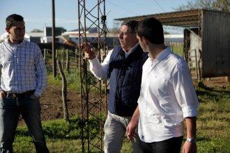 """De Angeli propone """"colonizar"""" tierras fiscales para la agricultura familiar"""