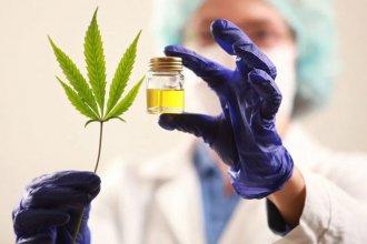 Obligado por un fallo judicial, IOSPER pagó 284 mil pesos por el aceite de cannabis para un afiliado
