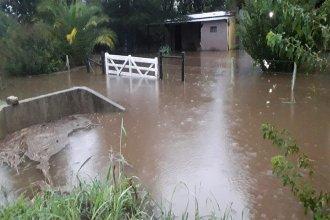 Asisten a familias de los municipios más afectados por las intensas lluvias