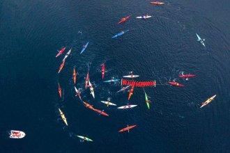A bordo de sus kayaks, desplegaron una gran protesta visual en el Canal de Beagle