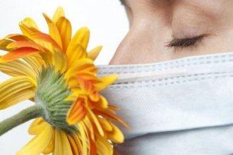 ¿Por qué se ven afectados y cómo se rehabilitan?: claves sobre la pérdida de olfato y gusto en pacientes con Covid