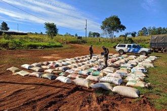 Decomisaron 16 toneladas de maíz que transportaban por el río Uruguay