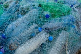 Asesoradas por CAFESG, nueve escuelas obtienen ingresos extras gracias a un programa de reciclado
