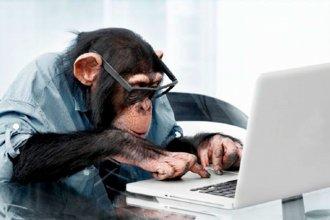 """""""Cuanto más alto sube el mono, más muestra la cola"""""""
