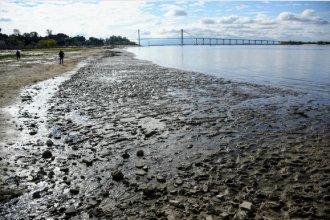 Bajante histórica del río Paraná: el gobierno declarará la emergencia hídrica