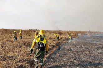 Con medios aéreos y acuáticos, brigadistas combatieron focos de incendio en el Delta del Paraná