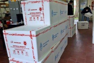 Llegaron casi 60 mil vacunas a la provincia y se sumaron dos nuevas marcas al Plan Rector