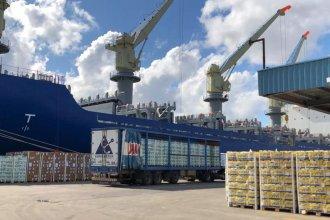 Cantidad, calidad y tipo de mercados: nuevo embarque representa un hito para la exportación de cítricos