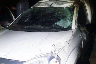 Tras esquivar un ciervo, camioneta perdió el control y volcó