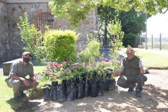La CARU donó 50 árboles autóctonos para el Parque San Carlos de Concordia