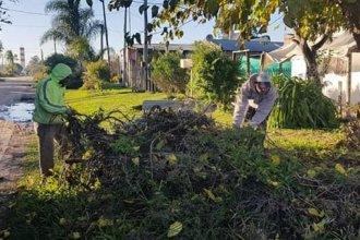 Vecinos de Villa Zorraquín reclaman una trituradora de ramas para deshacerse de los restos de poda