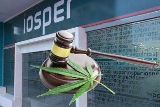 Otra vez la Justicia ordena a Iosper a cubrir tratamiento con aceite de cannabis