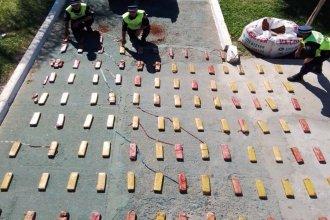 """El olfato de """"Janna"""" volvió a acertar y permitió detectar 90 kilos de drogas que llegaban a Entre Ríos desde Misiones"""