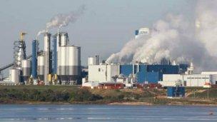 UPM advierte por más olores