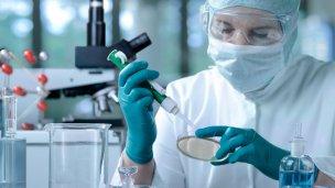 Prácticas en los laboratorios del Inta