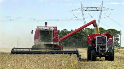 Cayó un 35% la producción de soja en Entre Ríos