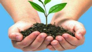 Gestionan el postítulo en educación ambiental