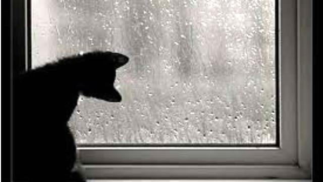 Lanzaron un alerta por lluvias y tormentas fuertes en la región