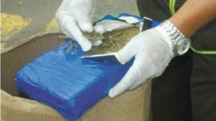 Cargaba 650 kilos de marihuana