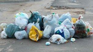 Estudiantes buscan generar conciencia ambiental