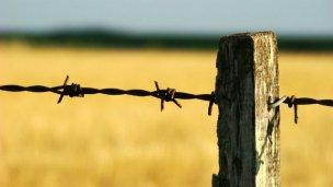 ¿Habrá nuevo impuesto para el campo entrerriano?