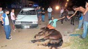 Se llevó puesto a un caballo y a su jinete