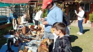 Feria de artesanos y artistas locales