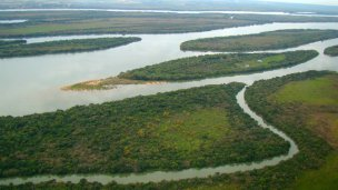 Temen que una planta ponga en peligro al delta entrerriano