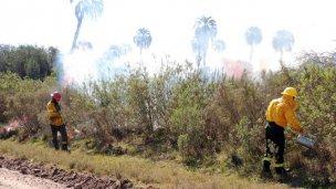 Si ves humo en El Palmar, no te asustes