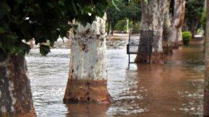 Creciente: el río va reduciendo su cauce