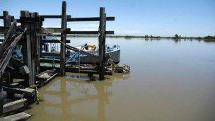 """Productores rurales del delta entrerriano aseguran que """"están en agonía"""""""