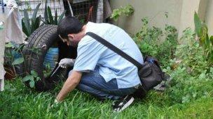 Dos nuevos casos de dengue