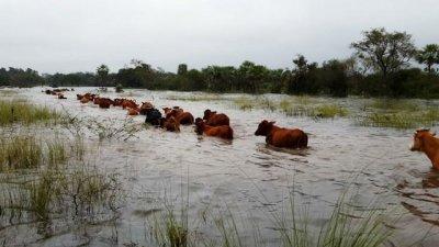 Llega la ayuda para productores afectados por la inundación