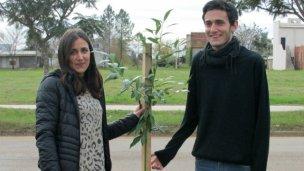Un árbol simbolizando la vida y la hermandad