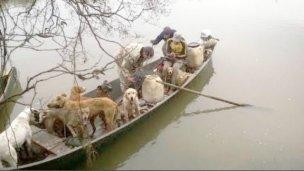 En un bote, cazando por el Mármol