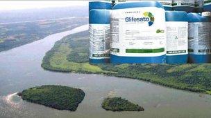 ¿De dónde proviene el glifosato que hallaron en el Paraná?