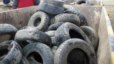 Recolectan neumáticos usados