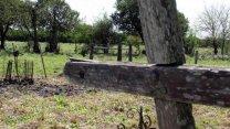 """Al rescate del """"Cementerio de los Negros"""""""