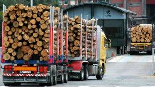 Tiene media sanción la autorización para vender madera al Uruguay