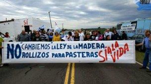 3 motivos por lo que ambientalistas llaman a salir a calles y rutas