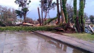 El desafiante cambio climático: Una tormenta por semana