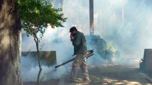 Los mosquitos, el informe de la CARU y la máquina de los dos millones