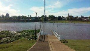 Según CTM, el río tenderá a los 12 metros