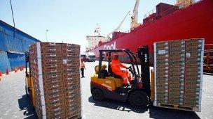 El citrus de exportación explora una salida por el puerto de Concepción