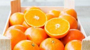 Partió a Brasil el primer cargamento de naranjas de Entre Ríos