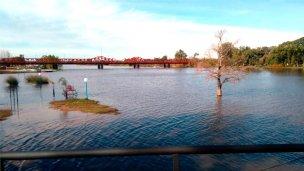 Inician gestiones ante Nación para dragar el río Gualeguaychú