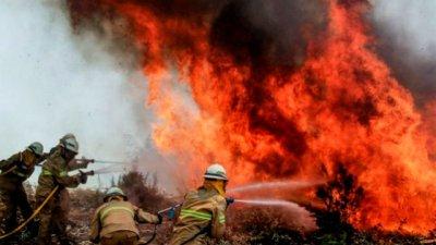 Devastador incendio dejó más de 60 muertos en Portugal
