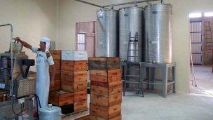 Cooperativa Apícola Villa Elisa, elaborando miel para el mundo